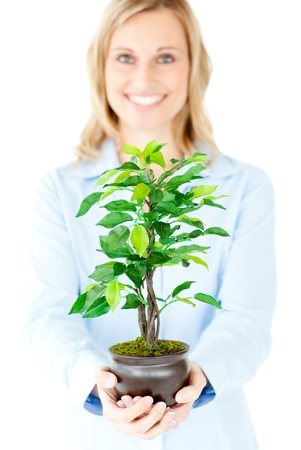 Portrait of a self-assured businesswoman holding a plant photo