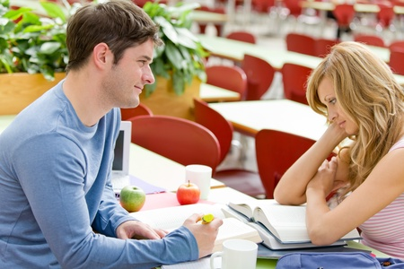 Portrait of two serious students working together in the cafeteria Stock Photo - 10254311