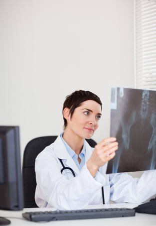 Focused female doctor looking at X-ray in her office photo