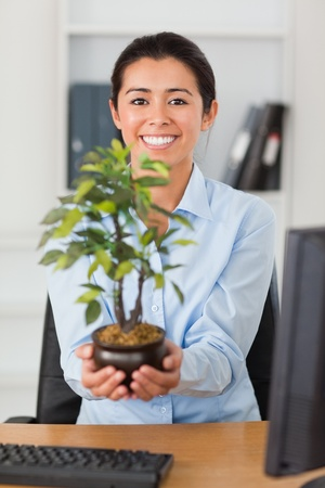Gorgeous woman holding a plant while looking at the camera at the office photo