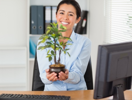 Attractive woman holding a plant while looking at the camera at the office photo