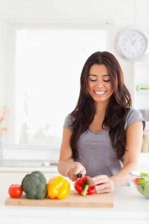 Good looking woman cooking vegetables while standing in the kitchen Stock Photo - 11204579