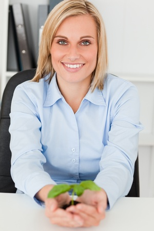 Businesswoman holding little green plant in her office photo
