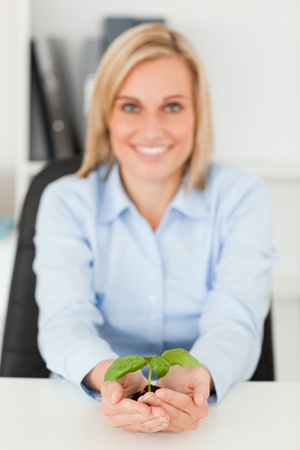 Smiling businesswoman holding a little green plant looking into camera in her office photo