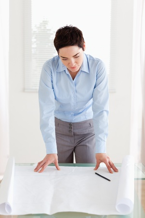Brunette businesswoman with a architectural plan in an office photo