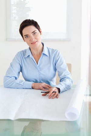 Working brunette businesswoman with a architectural plan in an office Stock Photo - 11214169