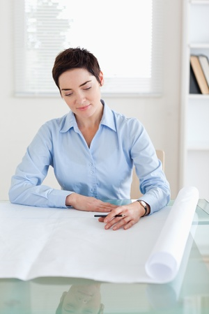 Working brunette woman with a architectural plan in an office Stock Photo - 11213442