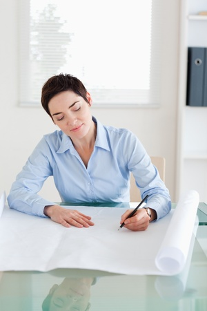 Gorgeous woman with a architectural plan in an office photo