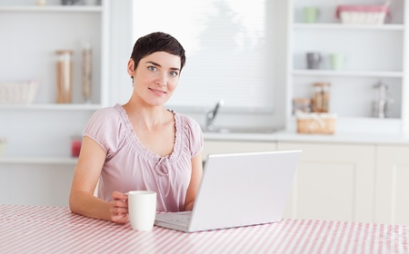 Gorgeous Woman working with a laptop holding a cup in a kitchen photo