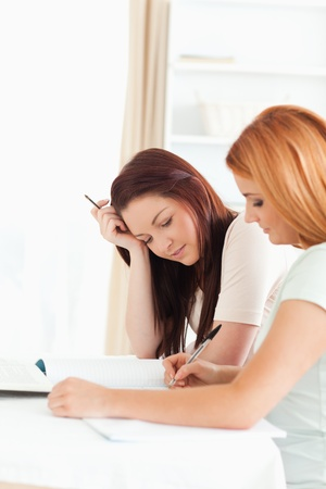Las mujeres se concentran sentados en una mesa haciendo los deberes en la cocina Foto de archivo - 11216039