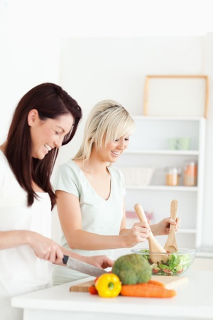 Smiling Women preparing dinner in a kitchen photo