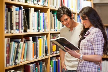 Young adults reading a book in a library Stock Photo - 11184569