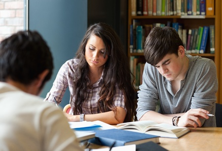 Students preparing the examinations in a library photo