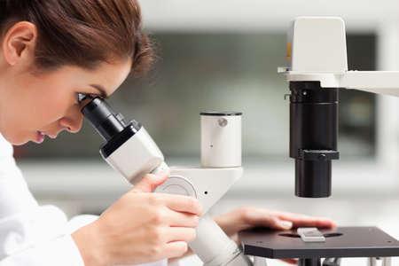 investigador cientifico: Cerca de un estudiante de ciencias de mujeres, que buscan en un microscopio en un laboratorio Foto de archivo