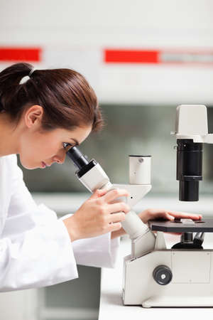 Portrait of a female scientist looking in a microscope in a laboratory photo