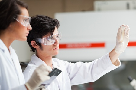 Serious science students looking at Petri dish in a laboratory Stock Photo - 11191086