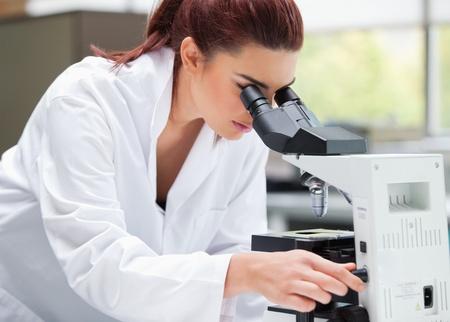 microscopio: Cient�fico joven que mira en un microscopio en un laboratorio