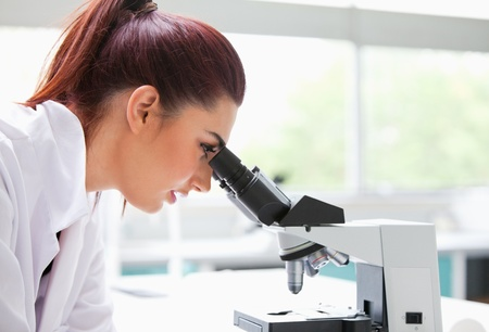 experimentation: Brunette looking into a microscope in a laboratory
