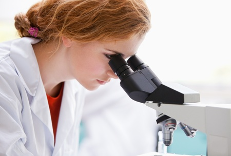 experimentation: Close up of a science student looking into a microscope in a laboratory Stock Photo