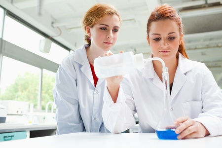 Scientists doing an experiment in a laboratory photo