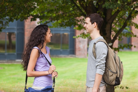 Charming students flirting in front of a tree Stock Photo - 11183722