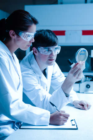 specimen: Portrait of scientists looking at Petri dish in a laboratory Stock Photo