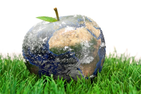 lawn care: 3d apple Earth on the grass against a white background