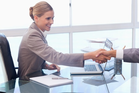 Young businesswoman receiving a customer in her office Stock Photo - 11685486