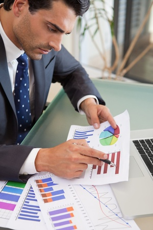 sales person: Portrait of a young sales person studying statistics in an office Stock Photo