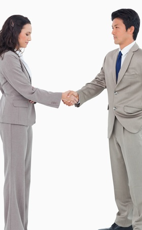 Young sales people shaking hands against a white background photo