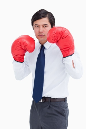 Young tradesman with boxing gloves against a white background photo