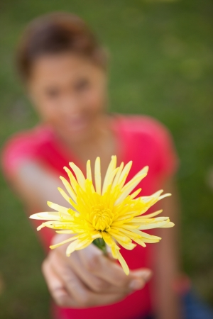 Woman holding a yellow flower in one hand at arms reach with focus on the flower Stock Photo - 13671262