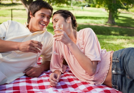 Man and a woman laughing happily and raising their glasses in toast while lying on a red and white picnic blanket Stock Photo - 13667639