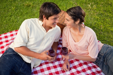 Man and a woman smiling as they look at each other while holding glasses of red wine during a picnic Stock Photo - 13667051