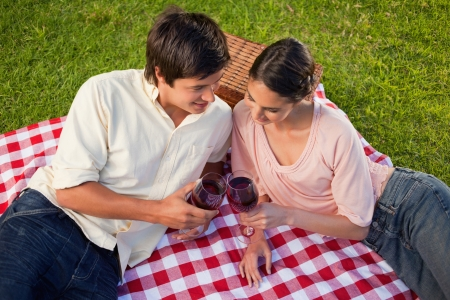 Man and a woman looking towards the blanket as they are holding glasses of wine during a picnic photo