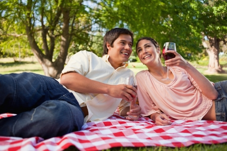 Man and a woman smiling and looking ahead of the while holding glasses of red wine during picnic Stock Photo - 13667501