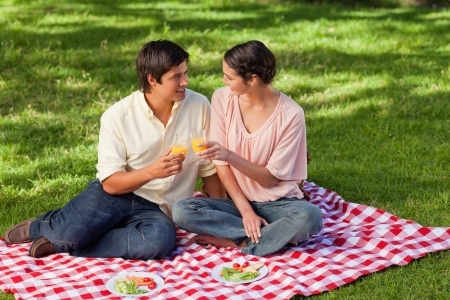 Man and a woman looking at each other while raising their glasses of orange juice during a picnic photo