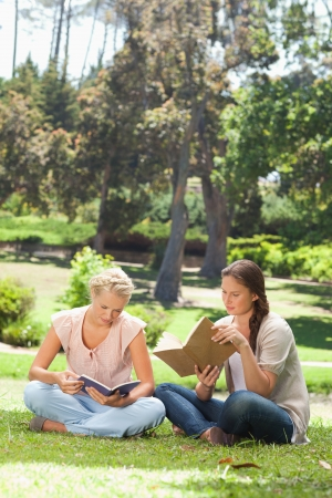 Female friends reading their books in the park photo