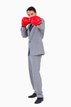 Businessman wearing boxing gloves againste white background photo