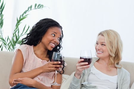 Two women are sitting on a couch and holding wine glasses Stock Photo - 13671524