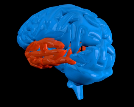 temporal: Blue brain with highlighted red  temporal lobe on black background