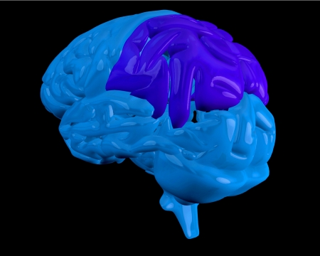 lobe: Blue brain with highlighted dark blue parietal lobe on black background Stock Photo