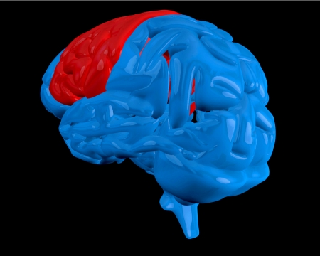 Blue brain with highlighted red cerebrum on black background photo