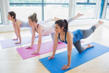 gimnasia aerobica: Mujeres en esteras en clase de yoga en fitness