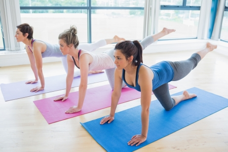 Women on mats at yoga class in fitness studio photo
