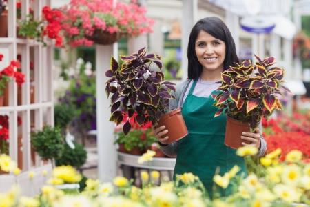 garden center: Garden center worker holding two plants while standing outside of the garden centre