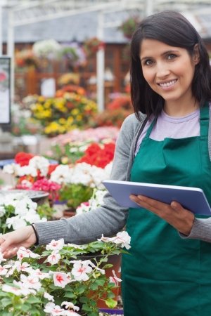 Smiling worker checking flowers in garden center with tablet computer photo
