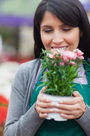 Florist holding flower while smelling it in garden centre photo