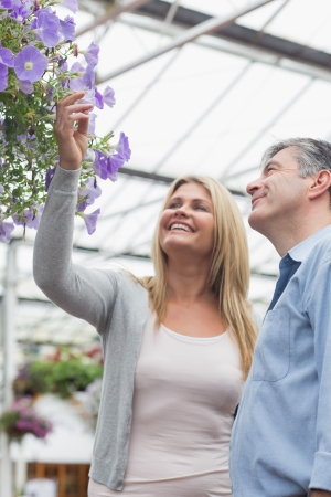 hanging basket: Couple looking at flowers in hanging basket with woman touching them