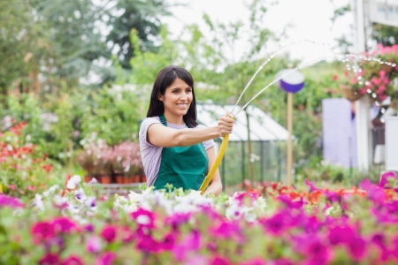 Employee watering plants with hose in garden center